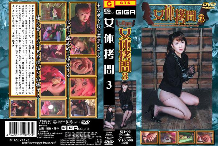 SII-03 Female torture 3, Mao Tachibana