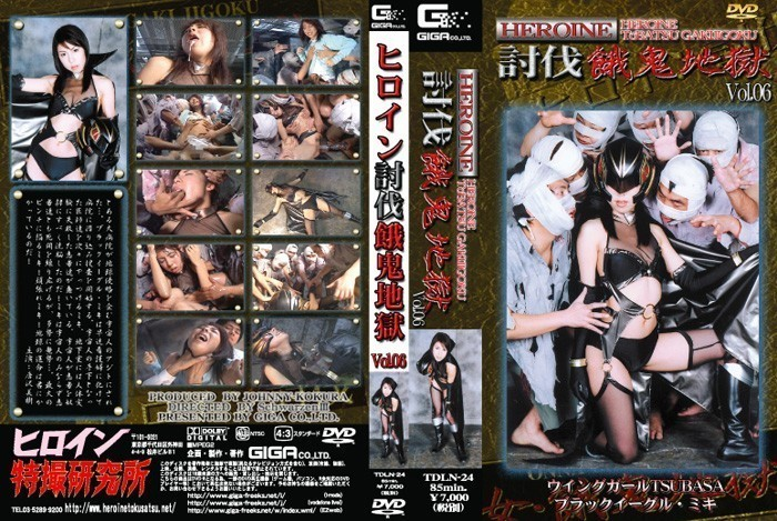 TDLN-24 Heroine subjugation hungry demon hell Vol.06 Miki Karasawa
