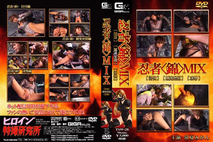 TSW-28 Woman Ninja Nishiki [Demons in Hell]